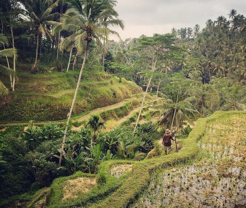 Trekking et randonnée en Indonésie : 3 excellents spots à découvrir