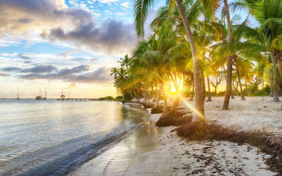 Préférer la location de gîte pour votre séjour en Guadeloupe